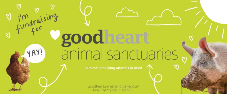Playful doodles surround a hen and a pig. Text reads 'I'm fundraising for Goodheart Animal Sanctuaries'