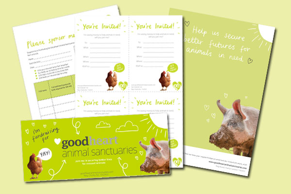 Downloadable fundraising kit