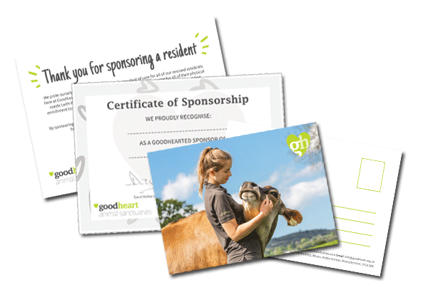 Sponsorship pack from Goodheart Animal Sanctuary