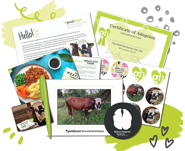 Standard rescued cow adoption box